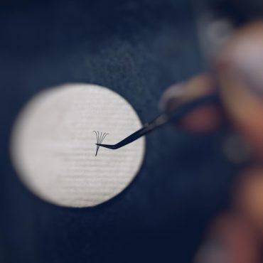 Виды ресниц для наращивания — изгибы, длина, толщина, как выбрать по типу глаз